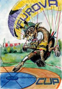 «FUROVA CUP 2019» соревнования по спорту сверхлёгкой авиации  (дисциплина: парапланы - полет на точность)